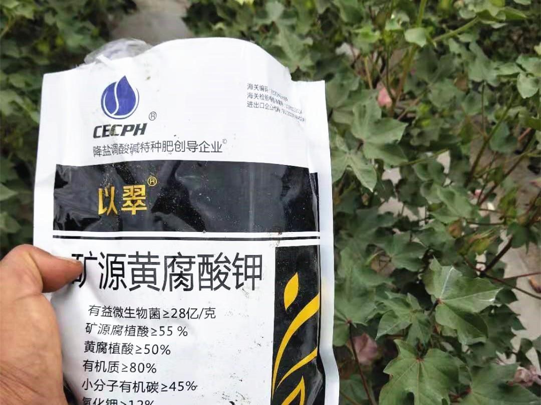 矿源黄腐酸钾如何用效果翻倍?