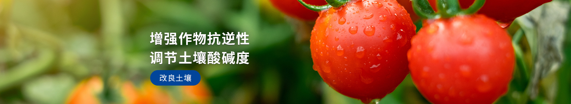 大量元素水溶肥,增强作物抗逆性,调节土壤酸碱性