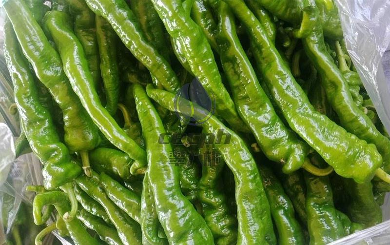 辣椒施什么肥比较好-以翠