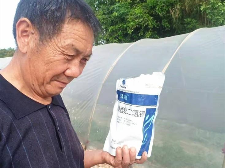 进口水溶肥好吗?如何选择品质好的进口水溶肥?