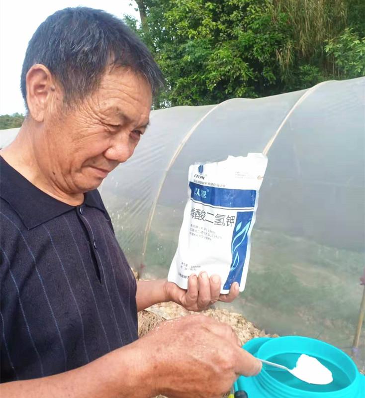 进口水溶肥厂家-以翠
