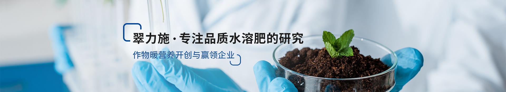 翠力施,专注品质水溶肥的研究