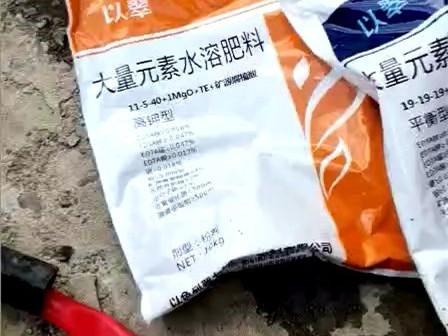 多雨季节怎么施肥?以翠螯盐增效来帮您